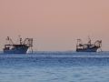 Fischerboote am Morgen / fishboat in the morning